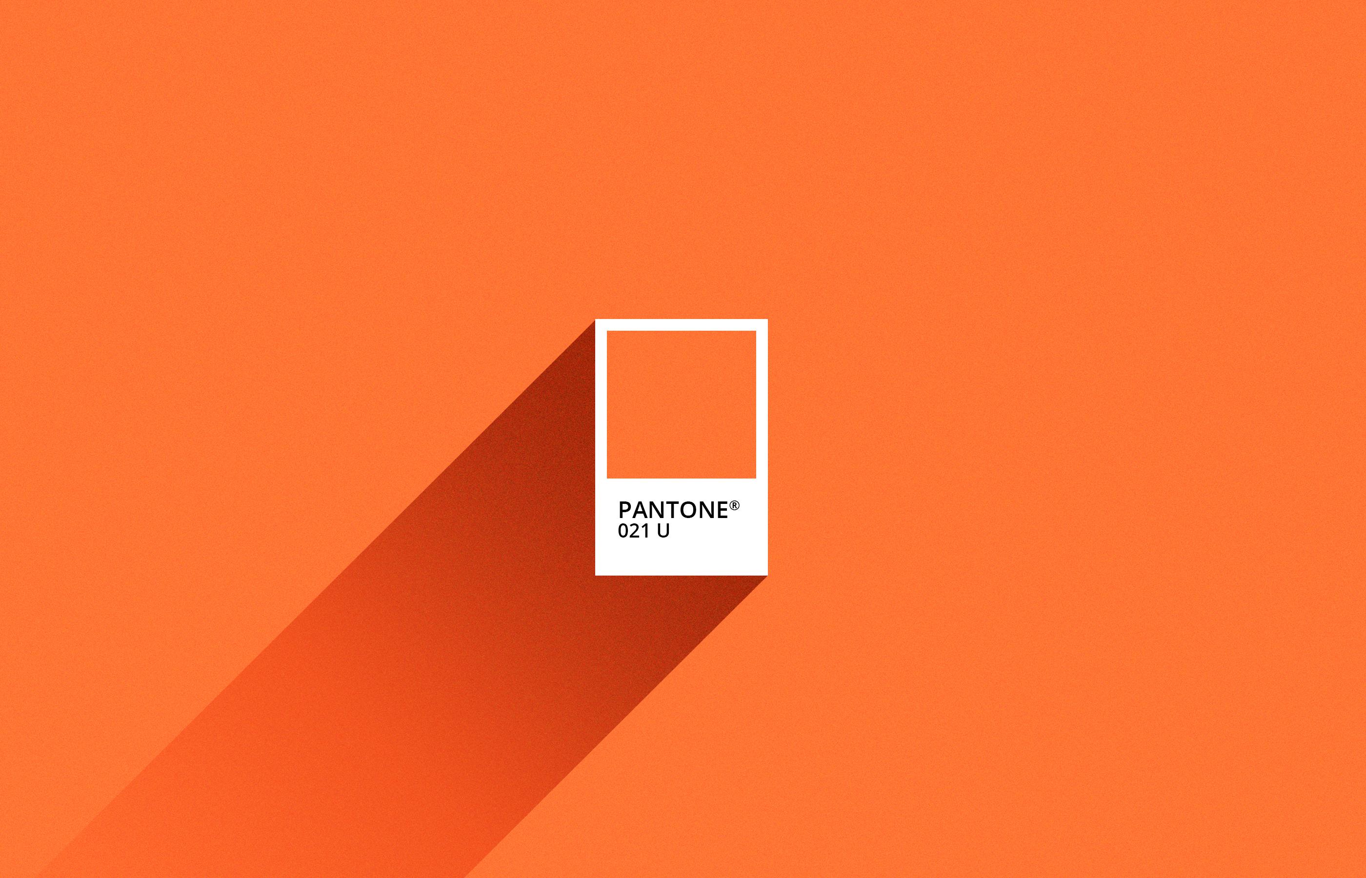 pumpkin-2800x1800
